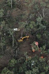 Clearfelling in the Leard Forest to make way for a coal mine.