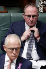 Deputy Prime Minister Barnaby Joyce and Prime Minister Malcolm Turnbull in Parliament last week.