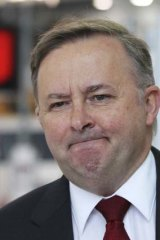 """If you're a state treasurer ... you'd have to be a nong to go with rail"": Opposition transport spokesman, Anthony Albanese."