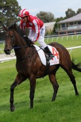 Damien Oliver on Belle Couture after winning the Elvis 'Ricky' Thurgood 34th Anniversary Plate.