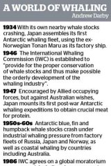 International Court of Justice orders Japan to end Antarctic whaling