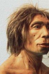 Gone: Neanderthal man struggled socially.