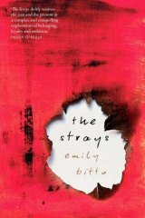 <i>The Strays</i>: Emily Bitto's Stella-winning novel.