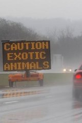 A sign posted on Interstate 70 warns drivers of animals loose.