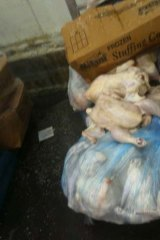 Graphic ... an image from the Baiada poultry plant, Laverton North.
