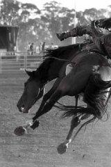 Throw down: An image from   Simon Upton's photobook <em>Tough Stock</em>.