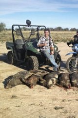Hunters and gatherers … (from left) Matt Melhuish, Steve and Jarod Lee pose with the feral pigs killed after a shoot near Wilcannia, in far western NSW.
