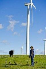 'Offensive' windfarm in Joe Hockey's sights.