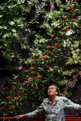 French Botanist Patrick Blanc
