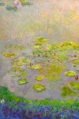 Monet's Garden: Waterlillies (Nympheas) (1914-17).