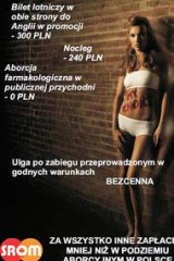 Priceless...the Polish poster urging women to head to Britain.
