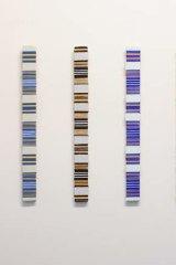 Fiona Little, 4 x vertical (blue/orange), 2014. Acrylic on wood, 49 x 4.5cm.
