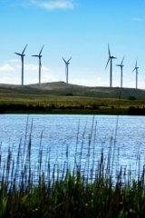 A wind farm at Coddrington, south-western Victoria.