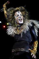 Cats is back at the Regent Theatre from March 3.