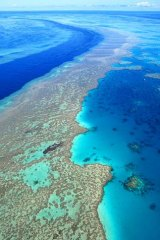 Environment: The Coalition will be facing a legal battle over its decision to allow dredging in the Great Barrier Reef.