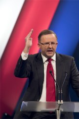 """Anthony Albanese: """"I like fighting Tories. That's what I do."""""""