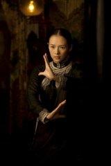 Zhang Ziyi portrays a passionate, driven figure in Wong Kar-wai's film.