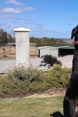 Raymond Kehlet with his dog.