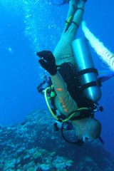 Bryan Fry diving at Lizard Island, Queensland, which is prime fang blenny territory.