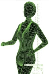 Voided: Scientists used to think the body's matrix just held things together.