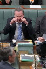 Leader of the House Christopher Pyne pretends to cry during a point of order during question time.