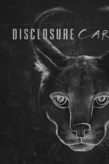 <i>Caracal</i> by Disclosure.
