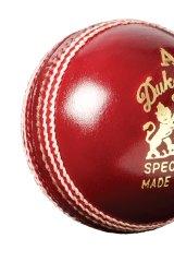 The Dukes Test ball.
