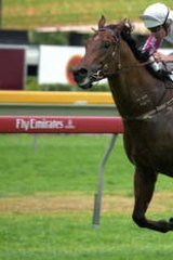 Race to the finish … Exceed And Excel at Randwick Racecourse in 2003.
