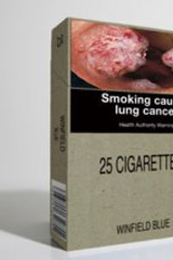 A mock-up of plainly packaged cigarettes.