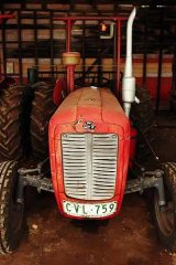 Would you know a Massey if you saw one?