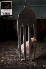Cooped up … an image from a Voiceless street poster.