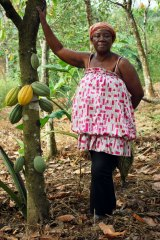 Mary Appiah is a Fairtrade cocoa farmer from the Enchi district of Ghana, one of the biggest cocoa-producing countries in the world.