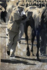 Perth Cup 1987 winner Rocket Racer is helped back to the stalls after suffering (unofficial) heat exhaustion.