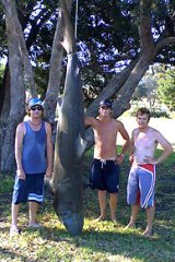 Not a hoax? The Maffra fishermen with the bronze whaler claimed to be caught 15-20km offshore from Lakes Entrance.