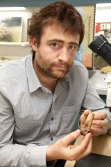 Dr Erich Fitzgerald with the five million-year-old bone of giant bony-toothed bird Pelagornis.