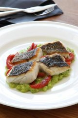 Grilled mulloway pieces with broad beans, tarragon and tomato.