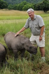 Horn of plenty: Ray Dearlove has gone from Sydney real estate agent to rhino champion.