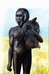 An artist's impression of Homo floresiensis, popularly known as hobbits.