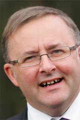 Dolly's saviour ... Anthony Albanese