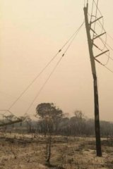 One of the Stradbroke Island power poles that will need to be replaced by Energex.