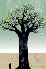Up to $5 trillion will be invested in sustainable technology in the next 20 years. Illustration: Simon Bosch