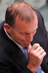 Cheap jibes ... Opposition Leader Tony Abbott.