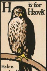 Confessional intensity: <i>H is for Hawk </i>, by Helen Macdonald.