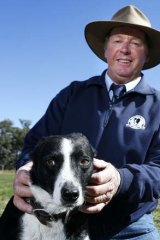 Jim Dodge with his dog Cossie won the National Sheep Dog Trials at the Hall Showground with a final score of 98 and 95.