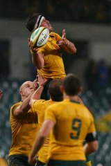 High time: Kane Douglas in action for the Wallabies. His family has joined him on the spring tour.