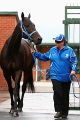 Black Caviar is paraded in front of the media with strapper Donna Fisher before her retirement is announced.