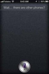 A screenshot of Siri's response.