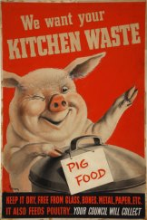 Householders were encouraged to save kitchen waste to feed farm animals.