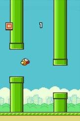A screenshot from Flappy Bird.