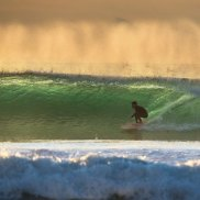 Sydney's big swell ramps up